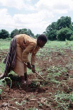 402px-Somalia_farmer_woman